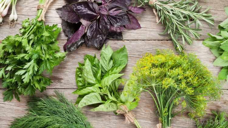 Sejarah Pengobatan Herbal di Negara Thailand